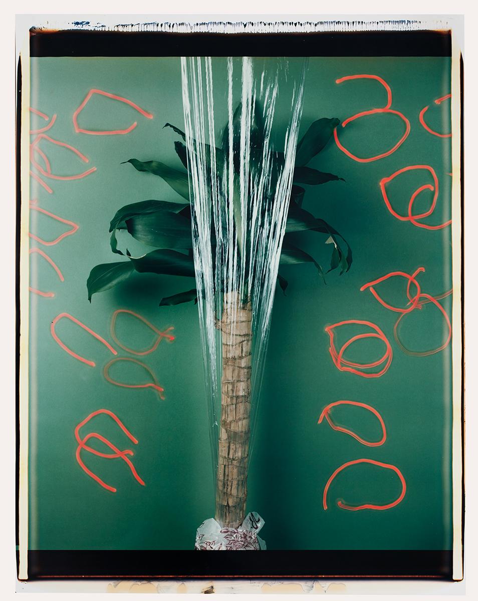 # 10 Les polaroid 60 x 50 cm, 1985