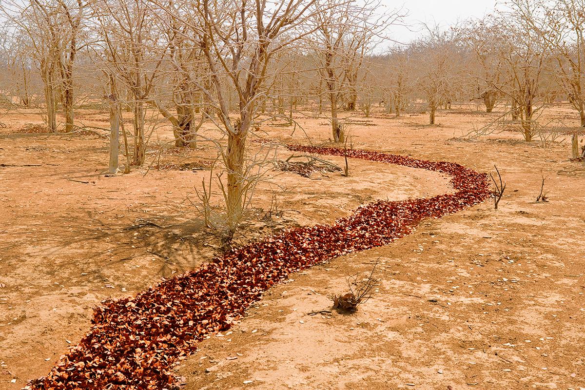 #178 Sacred Site,Namibie,Namibie, 2007, 17°35'16″S 13°20'40″E