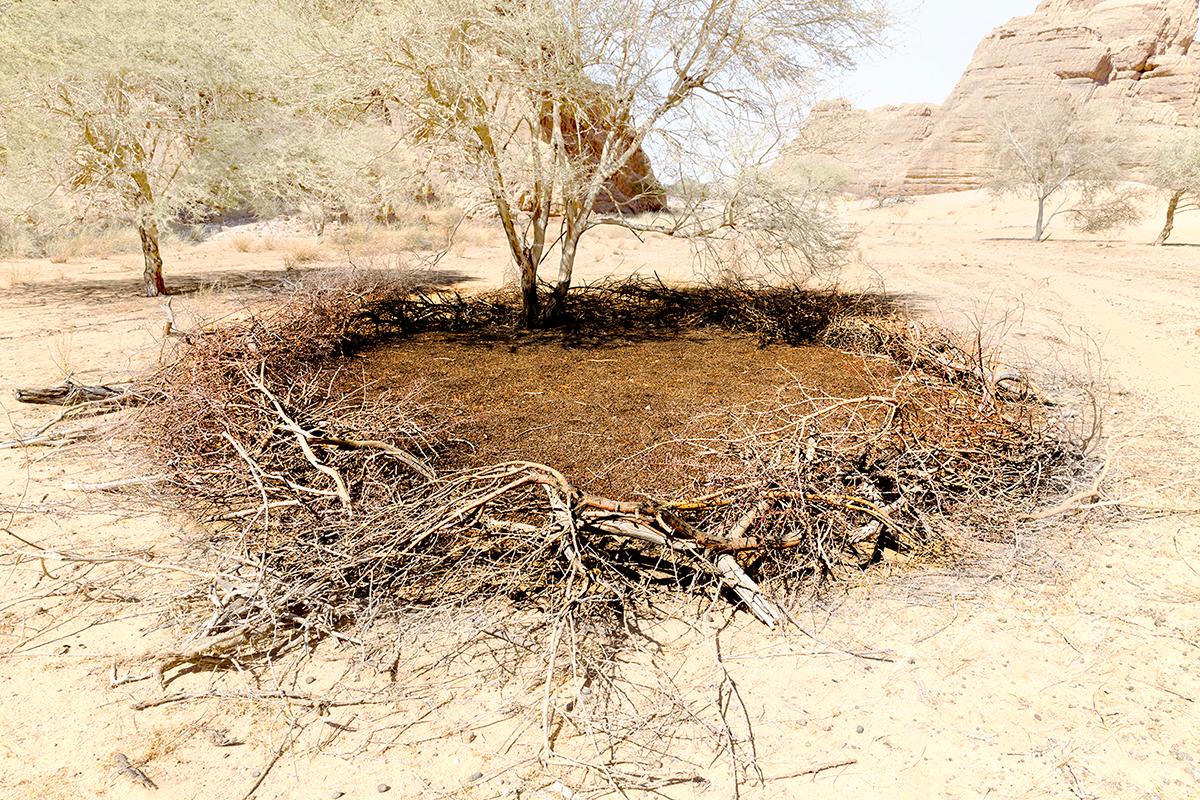 #296 Sacred Site, Tchad, 2013, 16°44'20″N 21°59'60″E