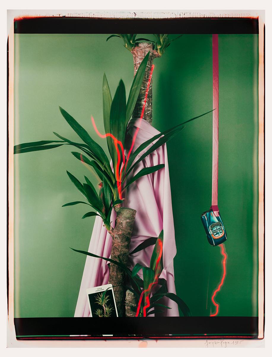 # 03 Les polaroid 60 x 50 cm, 1985