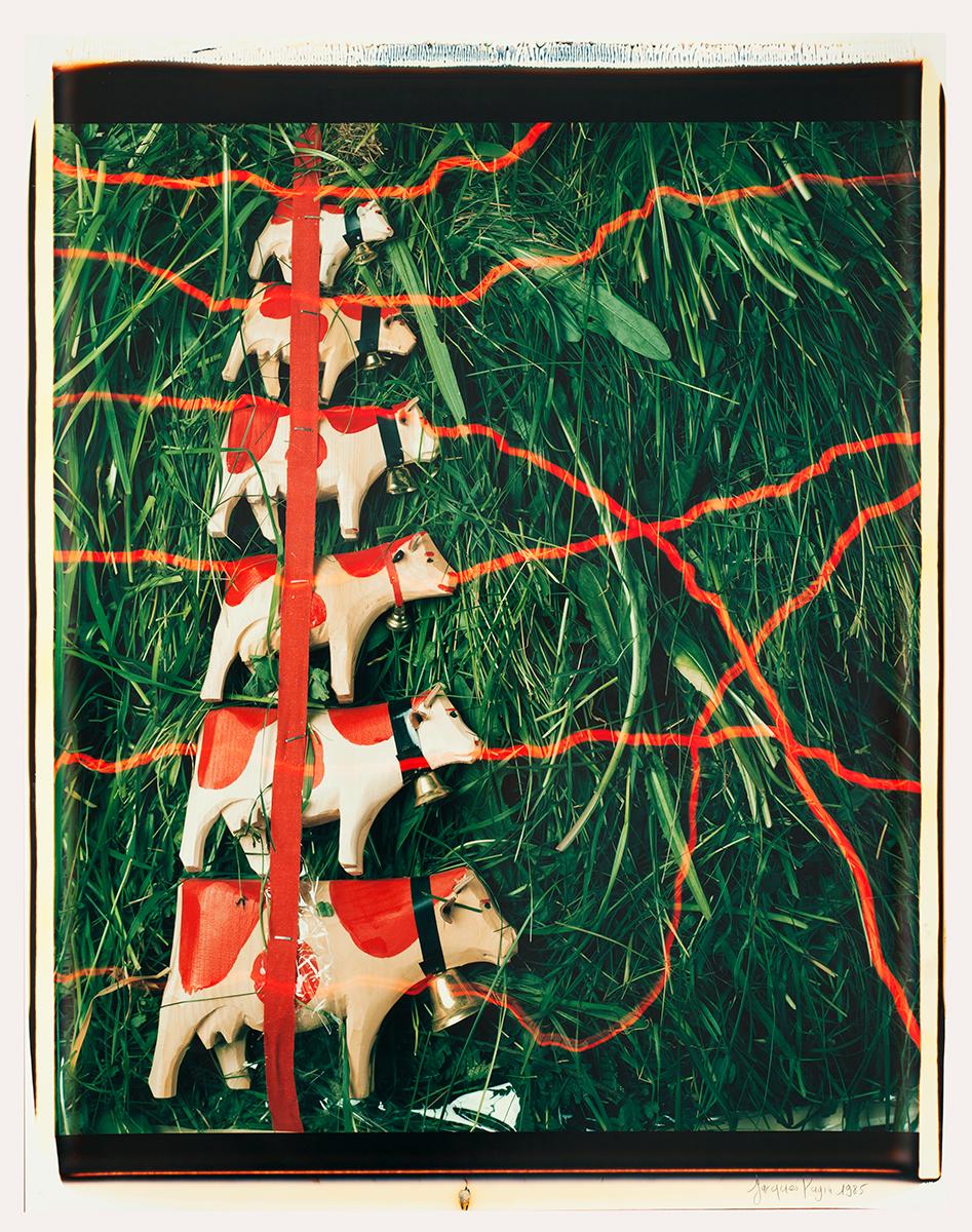 # 04 Les polaroid 60 x 50 cm, 1985