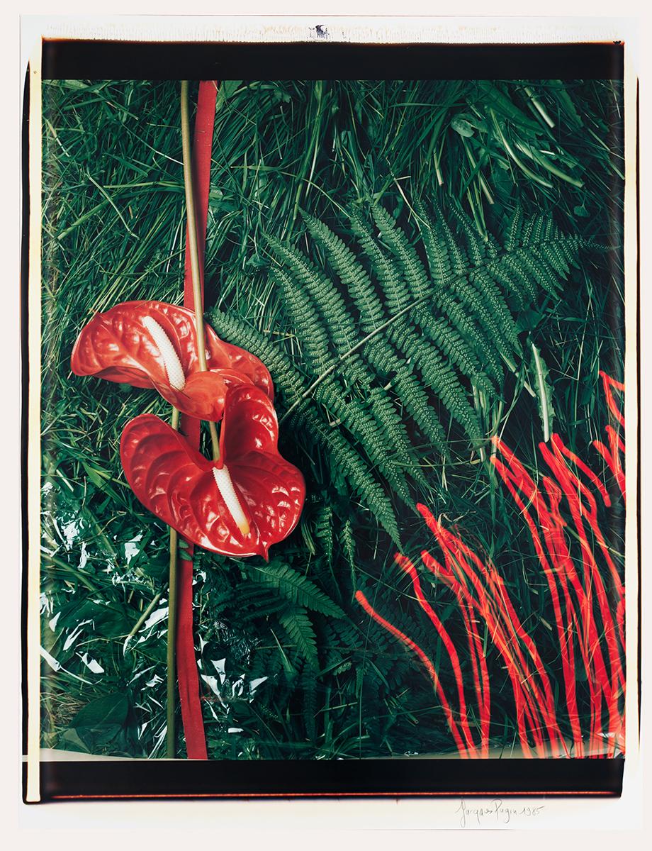 # 07 Les polaroid 60 x 50 cm, 1985